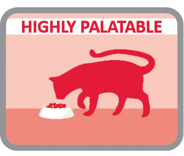Altamente palatável para os gatos mais caprichosos
