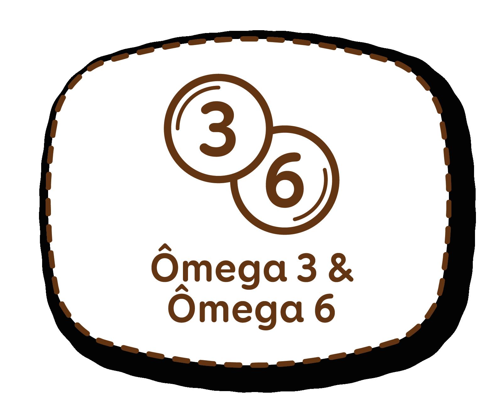 Ómega 3 & Ómega 6
