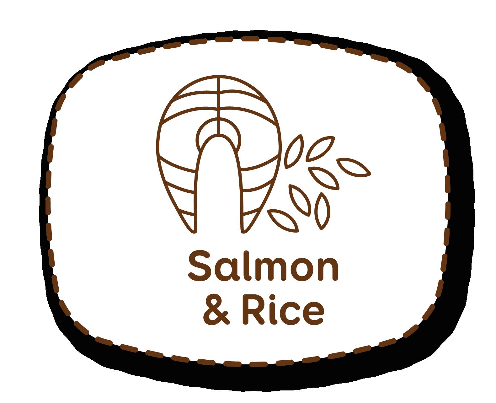Salmão e arroz: ingredientes saborosos e ricos em nutrientes