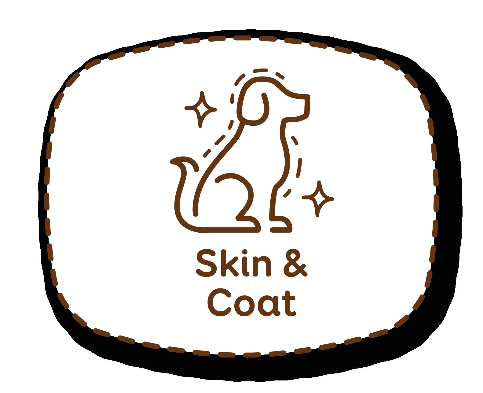 Pele e pelo: alimento especialmente formulado para o seu cuidado