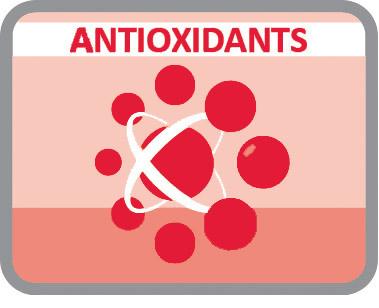 Com antioxidantes para atrasar o envelhecimento celular