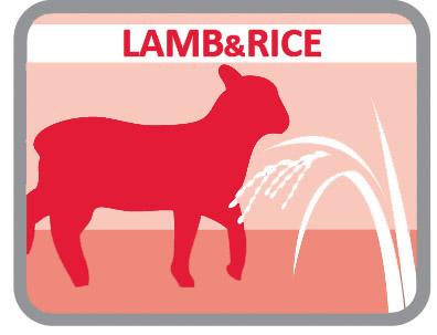 Com cordeiro e arroz para cães mais delicados