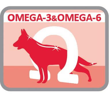Com ácidos gordos omega3 e omega6
