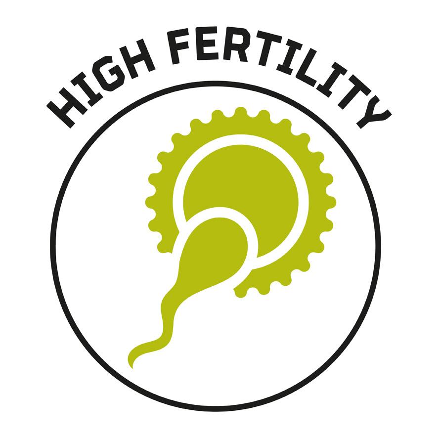 High Fertility