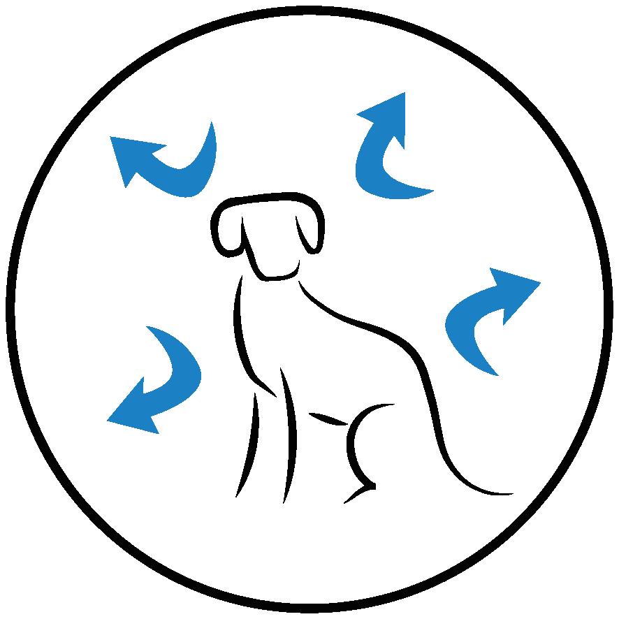 Uma fonte equilibrada de ácidos gordos Ω3 e Ω6, vitaminas E e C, β-caroteno e citrinos naturais para reforçar o frágil sistema imunitário dos jovens cachorros.